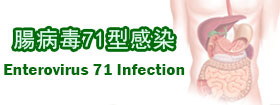 腸病毒71型感染Enterovirus 71 Infection