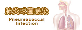 肺炎球菌感染 Pneumococcal Infection