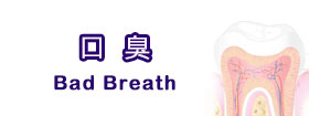 口臭Bad Breath
