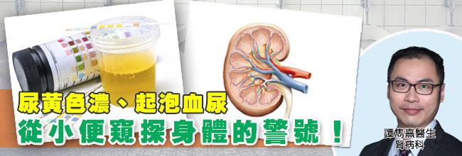 尿黃色濃、起泡血尿 從小便窺探身體的警號!